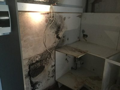 Mould on kitchen wall